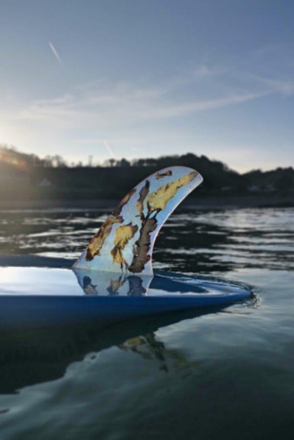seaweed surfboard